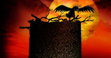 Czarne ptaszysko